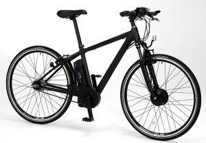Sanyo-eneloop-bike-20090727-600