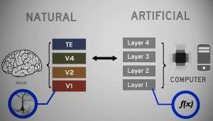 Brain-imaging-mit-harvard-2