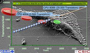 Nano-chips-20100315