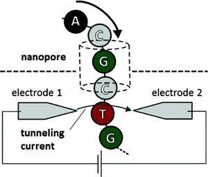 Nanopore-2010-12-23
