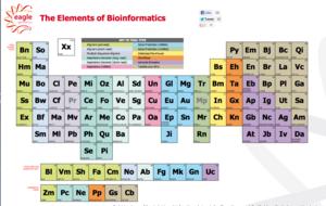 Elemetsbioinformatics