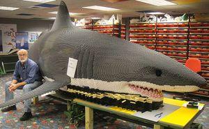 Steve-gerling-shark